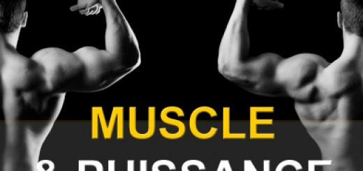 Programme musculation muscle et puissance