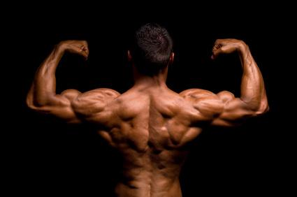 muscler son dos exercices et programme de musculation pour le dos garde la p che. Black Bedroom Furniture Sets. Home Design Ideas